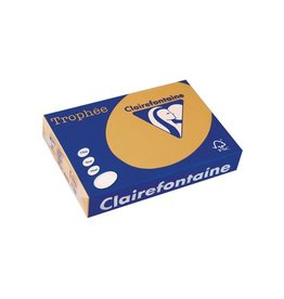 Clairefontaine Papier Clairefontaine Trophée Pastel A4, 160 g, 250 vel, mokkabruin