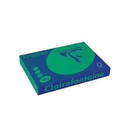 Clairefontaine Papier Clairefontaine Trophée Intens A3, 160g, 250vel, dennengroen
