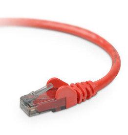Belkin Cable Patch Belkin CAT6 SNG/SHD 2M