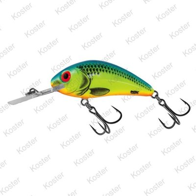 Salmo Rattlin' Hornet Floating Chartreuse Blue 4.5cm