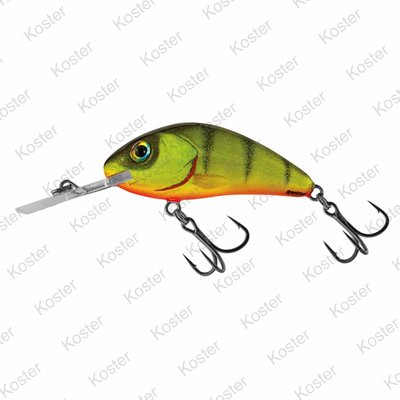 Salmo Rattlin' Hornet Floating Hot Perch 5.5cm