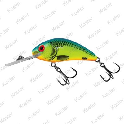 Salmo Rattlin' Hornet Floating Charteuse Blue 6.5cm