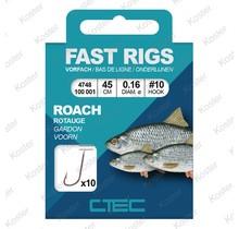 Coarse Roach 45cm.