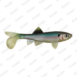 Berkley PowerBait Sick Fish 10cm - Green Penny