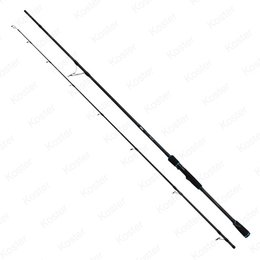 Salmo Hornet Pro Medium Rod 240 10-40gr 2-dlg