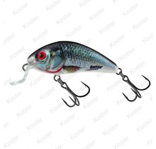 Rattlin' Hornet Holographic Real Dace Floating 4.5cm