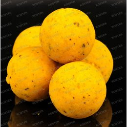 Mainline High Impact Essential I.B. Boilies