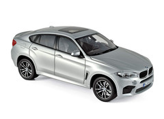 Products tagged with BMW X6 1:18