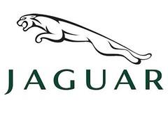 Jaguar modelauto's / Jaguar schaalmodellen