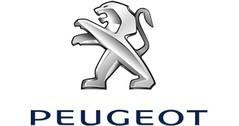 Peugeot model cars & scale models 1:24 (1/24)