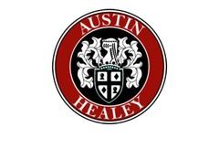 Austin Healey modelauto's / Austin Healey schaalmodellen