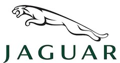 Jaguar 1:24 model cars & scale models