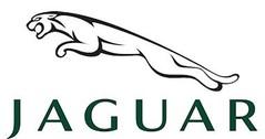 Jaguar model cars & scale models 1:43 (1/43)