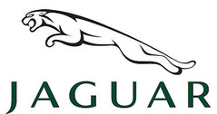 Jaguar 1:18 model cars & scale models