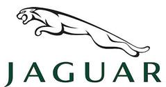 Jaguar model cars & scale models 1:18 (1/18)