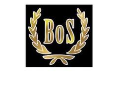 BoS Models modelauto's / BoS Models schaalmodellen