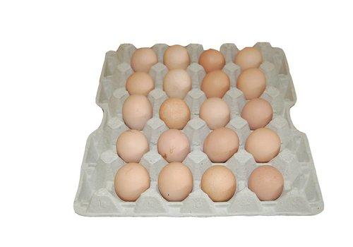 JUNAI Eiertrays 20 XL eieren