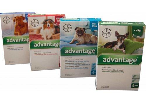 Bayer Advantage voor honden 4 pipetten