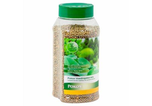 Pokon Groene planten voeding 800 gram