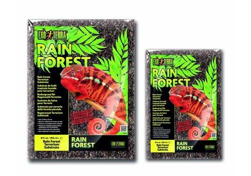 Exo Terra Rain Forest