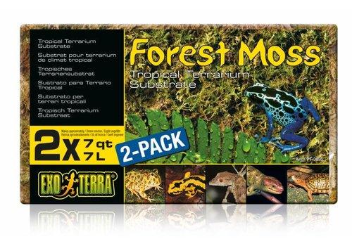 Exo Terra Forest Moss Dubbelpak