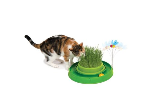 Cat It Play ballenbaan met kattengras
