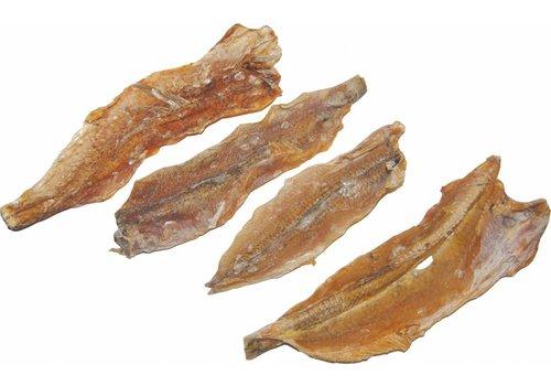 JUNAI Hagedisvis per 500 gram