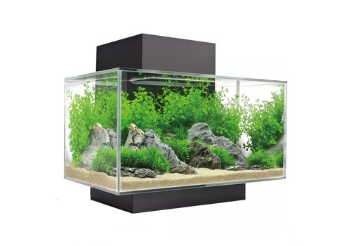 Fluval Edge I 2.0 aquarium