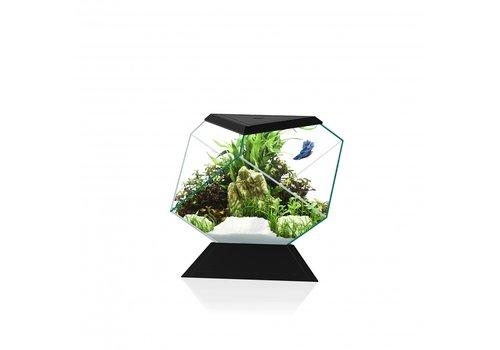 Ciano Aquarium Nexus Betta 5C