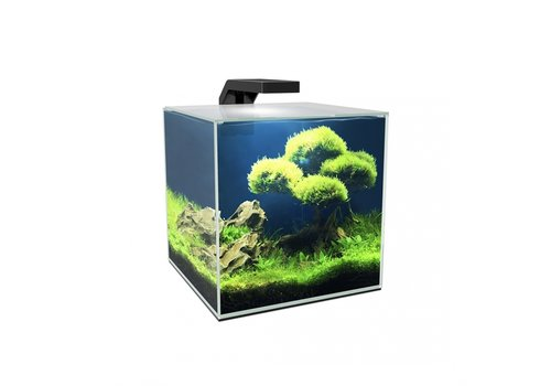 Ciano Aquarium Cube 15 LED