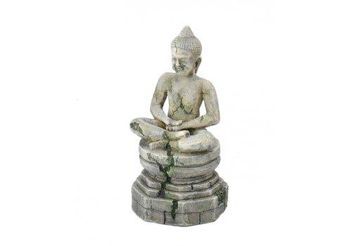 Aqua D'ella Bayon Boeddha