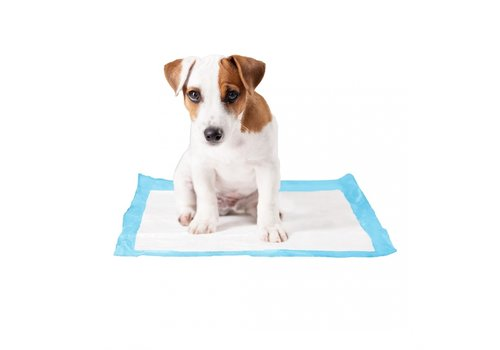 Duvo+ P-pad training puppy pads Medium