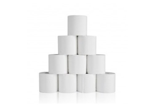 Paloma Toiletpapier Professional 2 laags 10 rollen