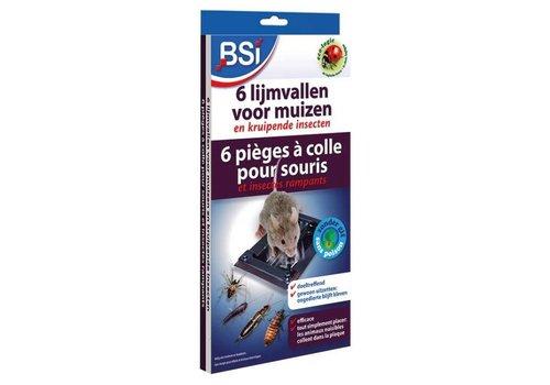 BSI 6 lijmvallen voor muizen
