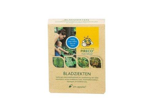 Pireco Bladziekten capsules 24 stuks
