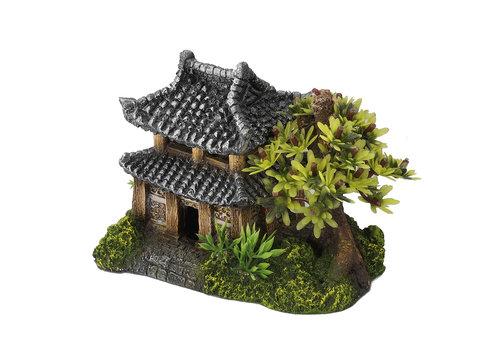 Aqua D'ella Aziatisch huis