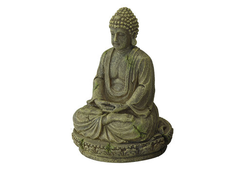 Aqua D'ella Bayon Buddha