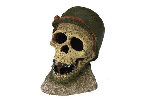 Aqua D'ella Soldaten schedel