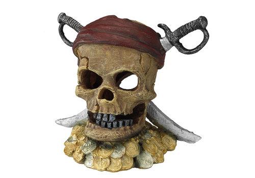 Aqua D'ella Piraten schedel zwaardhoofd