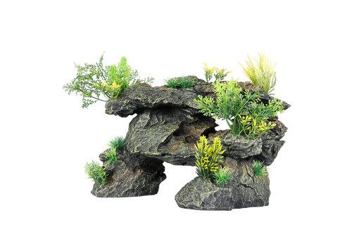 Aqua D'ella Rotsen met planten