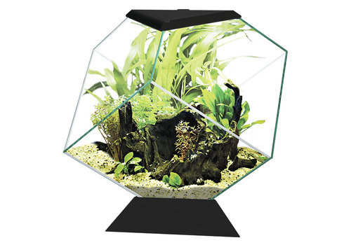 Ciano Aquarium Nexus 14C