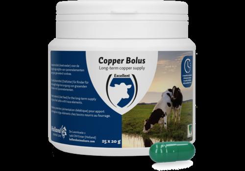 Excellent Copper bolus