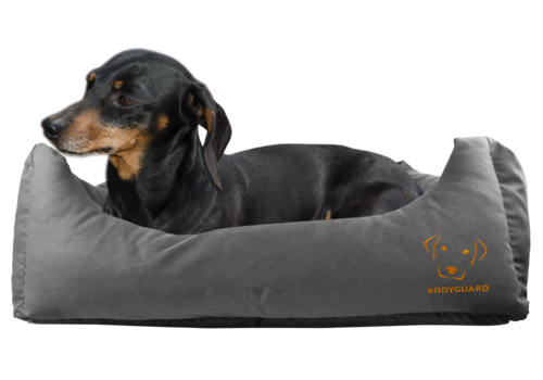 Bodyguard Sofa Bed grey