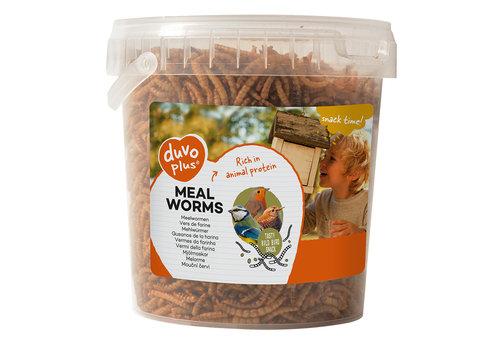 Duvo+ Meelwormen 1L