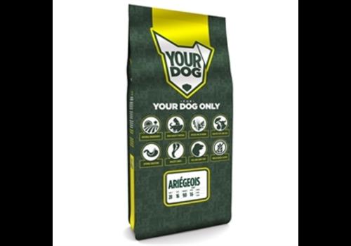 Yourdog Ariégeois Puppy