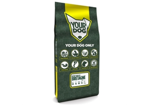 Yourdog Basset fauve de bretagne Pup