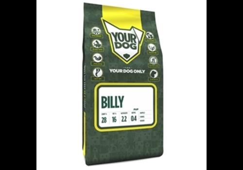 Yourdog Billy Senior