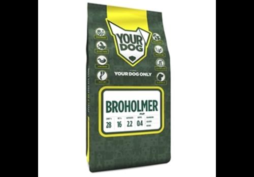 Yourdog Broholmer Volwassen