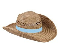 Nice quality Straw Hats available in the color blue