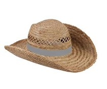 Nice quality Straw Hats available in the color gray